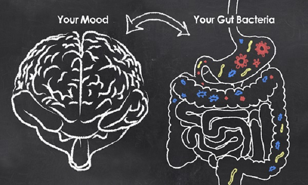 connection between Brain and Gut microbiome