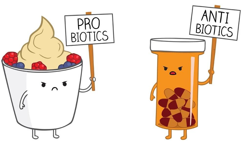 antibiotics-vs-probiotics
