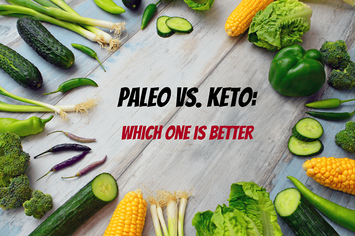 paleo or keto - which one is better